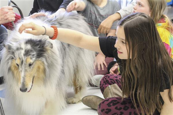 Therapy Dogs Visit Westmoreland Road Elementary