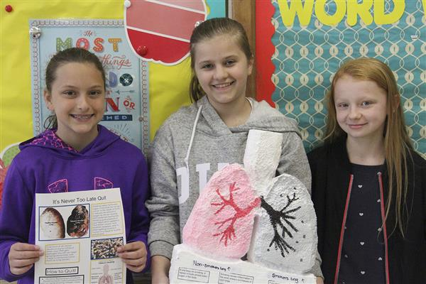 Sixth Grade Health Projects Breed Creativity, Raise Awareness