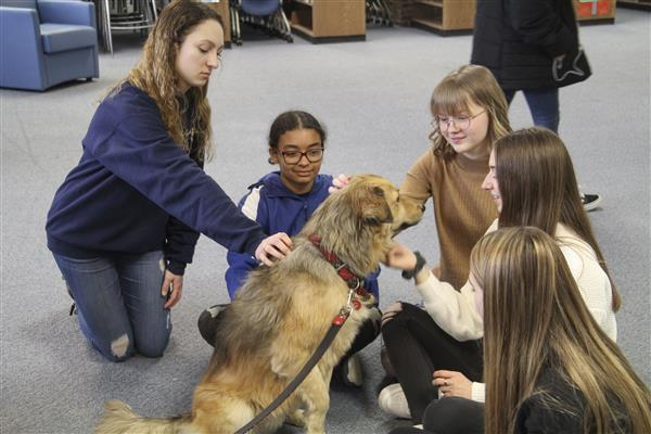 High School Students Get Visit from Therapy Dogs